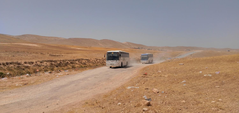 אוטובוסים נוסעים בכביש בנגב